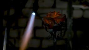 铁匠做铁上升了 人从铁做一朵玫瑰 库存图片