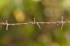 铁在绿色背景的倒钩导线 免版税库存照片