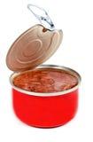 铁开放罐炖煮的食物 免版税图库摄影