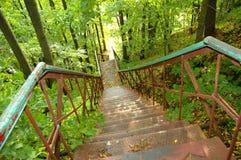 铁楼梯在森林里 免版税库存照片