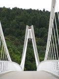 铁河上的桥的建筑在欧洲midle的深森林里  免版税库存照片