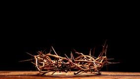 铁海棠在木背景的 盘旋您色的复活节彩蛋eps10空间文本主题的向量 免版税库存照片