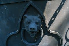 铁熊头 免版税库存图片