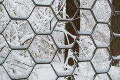 铁装饰篱芭抽象质地背景有雪的在温特帕克关闭 免版税库存照片