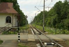 铁路交叉在森林里 免版税库存照片