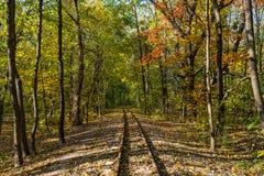 铁路和秋天 免版税库存图片