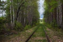 铁路在中间乌拉尔 免版税图库摄影