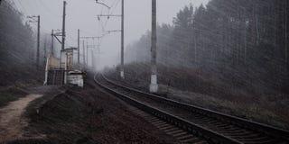 铁路在森林里 免版税库存照片