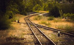 铁路在森林 免版税图库摄影