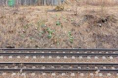 铁路垃圾在铁路堤防的许多玻璃瓶 免版税库存照片