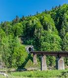 铁路桥和隧道在山 免版税库存照片