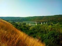 铁路桥在自然环境里 库存照片