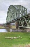 铁路桥梁 免版税图库摄影
