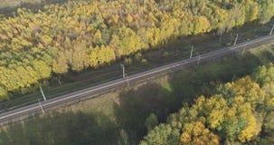 铁路空中射击在秋天树之间的在森林里在10月 免版税库存图片