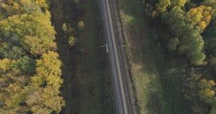 铁路空中射击在秋天树之间的在森林里在10月 免版税库存照片