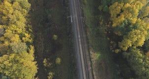铁路空中射击在秋天树之间的在森林里在10月 免版税图库摄影