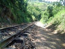 铁路线在São Lourenço,米纳斯吉拉斯州,巴西 免版税图库摄影