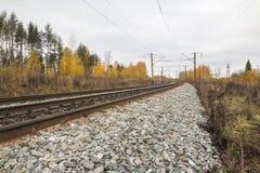 铁路路和树在黄色颜色 免版税库存图片