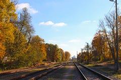铁路路在森林里秋天 免版税库存照片