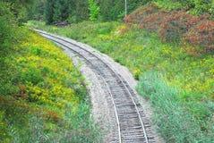 铁路轨道在弯曲的森林里左 库存图片