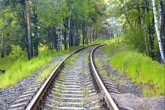 铁路轨道在森林里 免版税库存照片