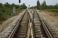 铁路轨道的连接点与绿色树的在铁路的左右边 被过滤的图象 为生活概念选择 挑选寿命 库存图片
