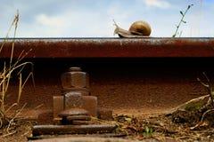 铁路运输铁路蜗牛 免版税库存照片