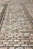 铁路运输 对没有叶子 免版税库存图片