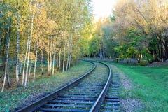 铁路通过秋天 免版税库存图片
