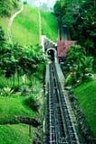 铁路隧道在森林里 免版税库存照片
