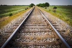 铁路,铁路,火车轨道,与及早绿色牧场地Mornin 库存照片