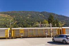 铁路autotransporter横穿路 图库摄影
