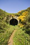 铁路ravenscar隧道 库存图片