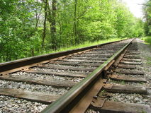 铁轨在一个夏日 免版税库存照片