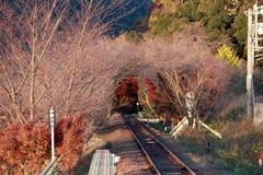 铁轨秋天视图在Sagano盘旋火车的 免版税库存图片