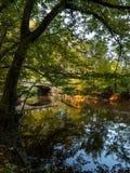铁锁式桥梁在秋天 免版税库存照片