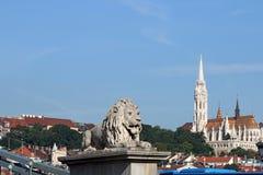 铁锁式桥梁狮子雕象 库存照片