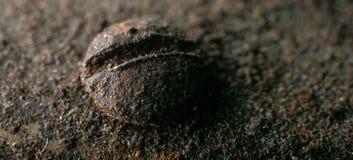 铁锈和各种各样的零件宏观照片  免版税库存照片