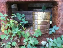 铁锈框架,金属能,木头,绿色常春藤,老墙壁 库存图片
