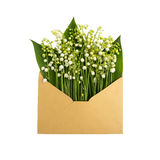 铃兰在信封的,隔绝在白色 免版税库存照片