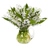 铃兰花束在白色背景隔绝 免版税图库摄影