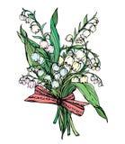 铃兰-葡萄酒春天flo的被刻记的例证 免版税库存照片