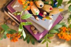 铅笔书概念后面学校 库存图片