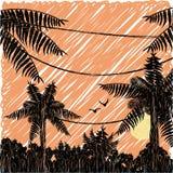 铅笔被画的日落在热带密林 库存照片