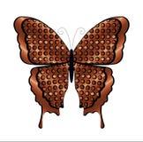 铜和黑蝴蝶 库存图片