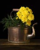 铜水壶和花 库存照片