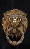 以黄铜狮子的形式门把手 免版税图库摄影