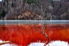 铜矿开发的水污染 免版税库存照片