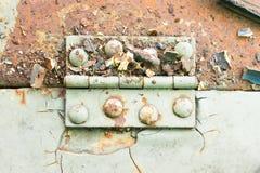 铰链和铁锈和铆钉在水平老浅绿色的金属板 库存图片