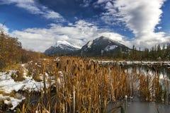 银朱的湖沼泽沼泽地和登上Rundle班夫国家公园加拿大人罗基斯 库存照片